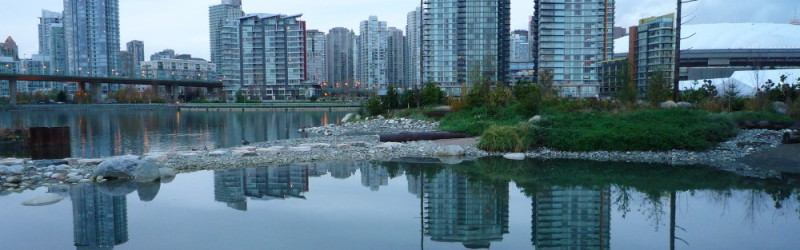 Clean up Southeast False Creek